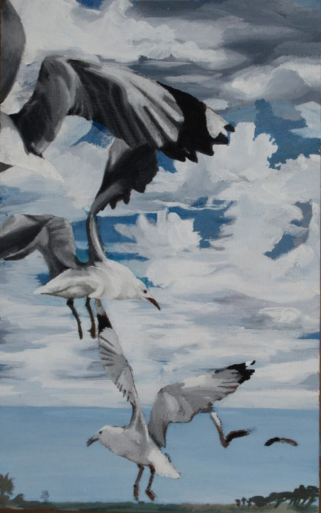 Sea Point Gulls Acrylic On Board 40 X 26cm R1000 (Custom)