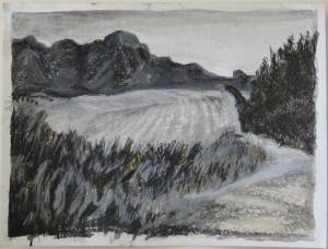 Country Scene Charcoal, Pastel, Ink And Pen On Paper 34 X 46 Cm 2008 R1000